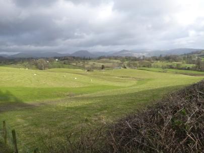View from Hawkshead Hill