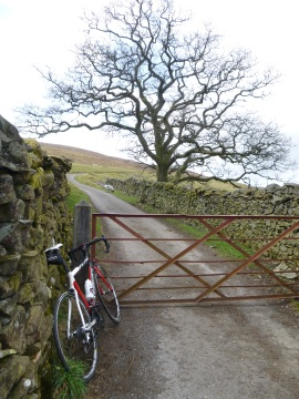Leaving Dentdale