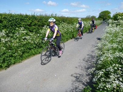 Cycling amidst the cow parsley