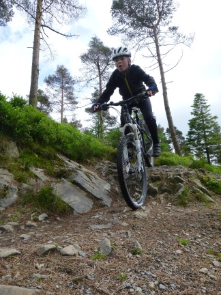 Riding Grizedale's Red Route